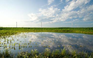 Wind farm in Indiana (Photo by Ben Husmann, CC BY SA)