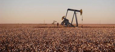 Oil extraction in a cotton field (Photo: Wikimedia)