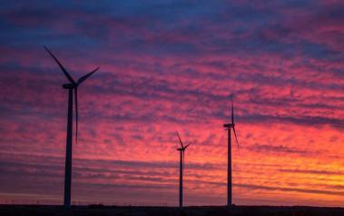 Wind park in Texas (Author: Rockin'Rita, CC BY SA)