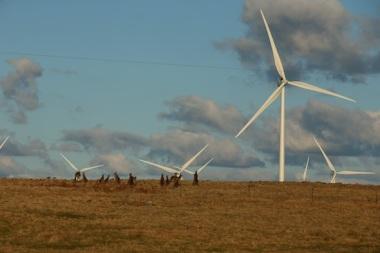 Taralga wind farm (courtesy of Vestas Wind Systems)