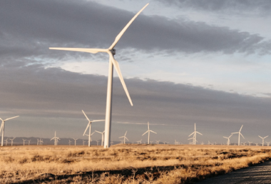 Texas wind energy (screenshot, cropped image, via AWEA)