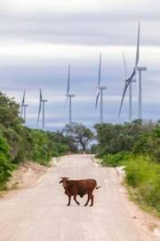 12-18-baffin-wind-farm