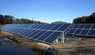 Solar array in North Carolina (Matt Born / StarNews)