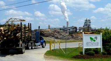 Logs arriving at a pellet facility  (MUST CREDIT: Washington Post photo by Joby Warrick)