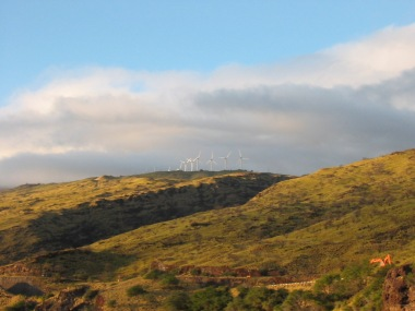 Kaheawa Wind Farm (Ryan Oelke, Wikimedia Commons)