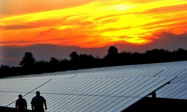 Solar plant in Belarus (Photo: Viktor Drachev / TASS)