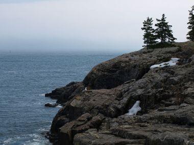 Acadia National Park (Ymblanter, Wikimedia Commons)