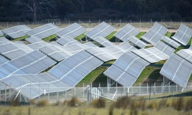 Solar panels (Photo: Lukas Coch / AAP)