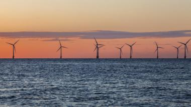 Wind farms accounted for over half of the capacity installed. (Shutterstock)