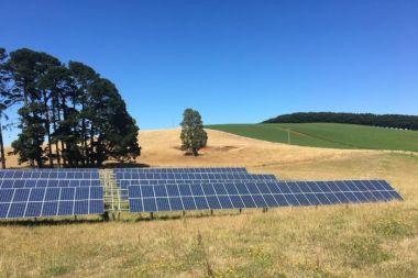 Solar powers irrigation (ABC Rural / Bridget Fitzgerald)