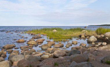 Baltic Sea off Estonia (Credit: Wikimedia)