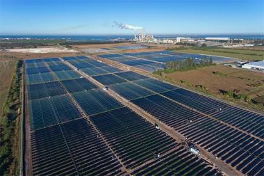 Tampa solar facility