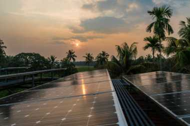 Solar panels in India (Getty Images)