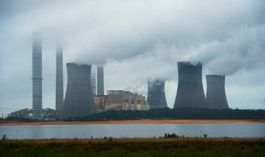 Coal-burning power plant in Georgia (Photo: AP)